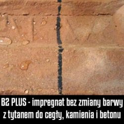 b2plus